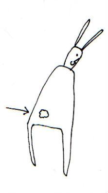 bunny butt drawing