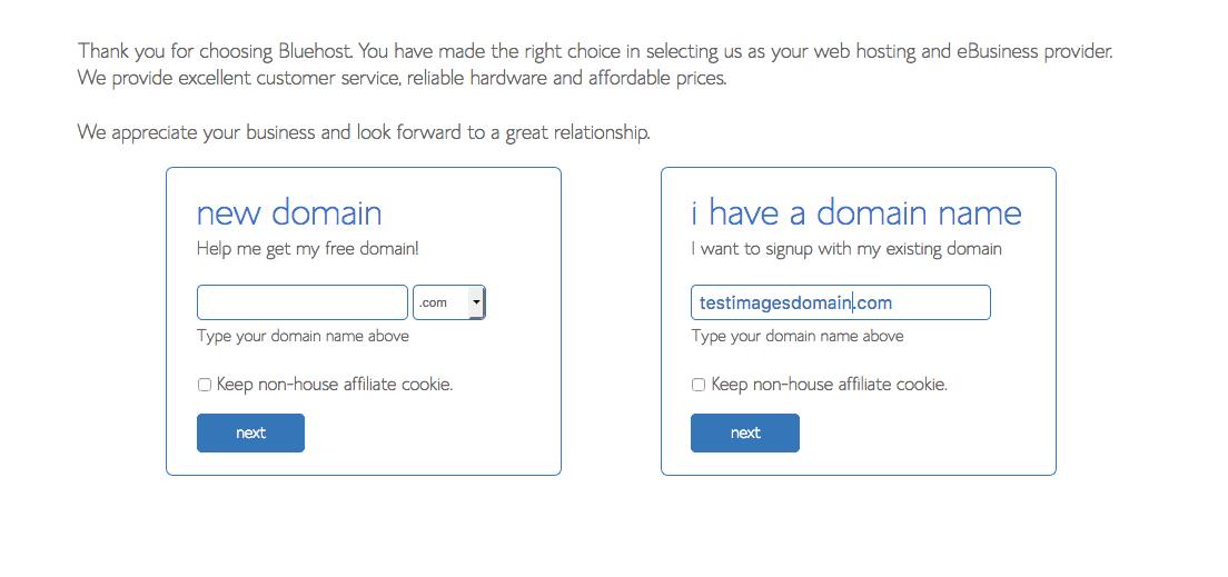 choosing domain name for blog